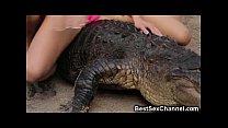 WTF Hot Babes Riding Alligators!