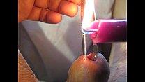 Urethra in hot purple wax