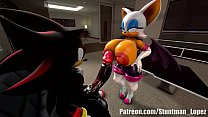 Rouge And Shadow (Commission: jimmythereptile)